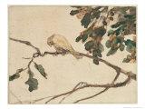 Canary on an Oak Tree Branch Giclee Print by Adolph Freidrich Erdmann Von Menzel