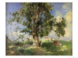 The Old Ash Tree Giclee Print by Edward Arthur Walton