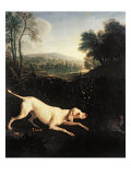 Louis XIV's Dog, Tane Lmina gicle por Alexandre-Francois Desportes