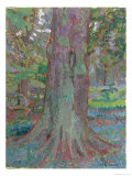 Tree Trunk, 1916 Giclee Print by Harold Gilman