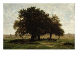 Holm Oaks, Apremont, 1850-52 Giclee Print by Pierre Etienne Theodore Rousseau