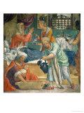 The Birth of the Virgin Giclee Print by Bernardino Luini