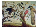 The Bird's Concert Giclee Print by Frans Snyders