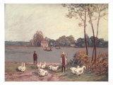 On the Banks of the Loing Giclee Print by Alfred Sisley