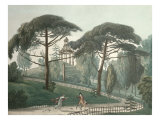 The Maze or Belvedere of the Jardin Des Plantes in Paris, Engraved by Nicolas Marie Joseph Chapuy Giclee Print by Antoine Pierre Mongin