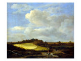 The Wheatfield Giclee Print by Jacob Isaaksz. Or Isaacksz. Van Ruisdael