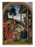 Adoration of the Magi, c.1476 Giclee Print by Pietro Perugino