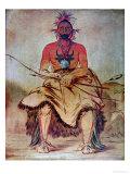 Buffalo Bull, 1835 Giclee Print by George Catlin