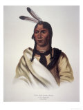 The Sleepy Eye, 1824 Giclee Print by Charles Bird King