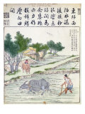 Rice Cultivation in China Giclee Print