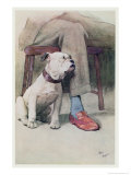 Bulldog Giclee Print by Cecil Aldin