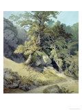 Canonteign, Devon Giclee Print by John White Abbott