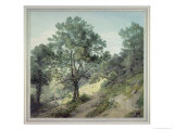 View Near Cantonteign, Devon Giclee Print by John White Abbott