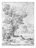Wooded Landscape Giclee Print by Agostino Carracci