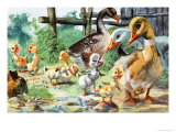 The Ugly Duckling Giclee Print