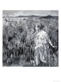People and Plants: The Plant That Protected a Goddess Giclee Print by Paul Rainer