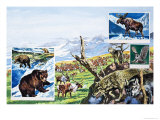 Assorted Wildlife Giclee Print by Harry Green