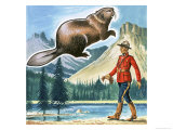 The Beaver, Emblem of Canada. Giclee Print