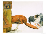 Collie Dog Chases Off a Fox Giclee Print by Kenneth Lilly