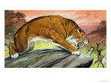 Sabre-Toothed Tiger Out Hunting Giclee Print by Angus Mcbride