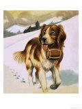St Bernard's Dog Giclee Print
