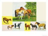 Peeps at Nature: Britain&#39;s Wild Ponies Giclee Print by Leslie Field Marchant