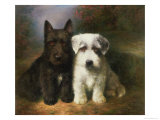 Scottish and a Sealyham Terrier Giclee Print by Lilian Cheviot