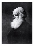 Charles Darwin, Print After the Painting by W.W. Ouless, from The History of the Nation Giclee Print by Walter William Ouless