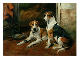 Hounds in a Stable Interior Giclee Print by John Emms