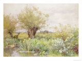 Near Shiplake Giclee Print by Alfred Parsons
