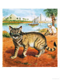 Cat in on the Banks of the Nile Giclee Print by Clive Uptton
