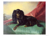 King Charles Spaniel on a Green Cushion Giclee Print by Ferdinand Krumholz