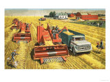 Combine Harvesters Harvest Wheat on the Vast Plains of Canada Giclee Print by Stobo