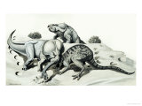Battle Between an Egg-Robbing Oviraptor and a Mother Protoceratops Giclee Print by Helen Haywood