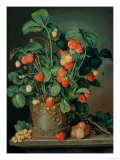 Still Life with Strawberries Giclee Print by W. Weiss