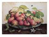 Pears with Hawthorns Giclee Print by Giovanna Garzoni