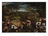 Harvest Giclee Print by Jacopo Bassano