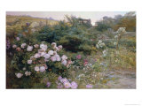 In Full Bloom Giclee Print by Henry Arthur Bonnefoy