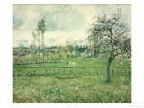 Meadow at Eragny, 1885 Giclee Print by Camille Pissarro