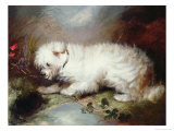 On the Watch, 1867 Giclee Print by Maxwell Armfield