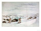 Hunting Buffalo on Snow-Shoes Giclee Print by George Catlin