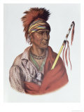 Notchimine, an Iowa Chief, The Indian Tribes of North America, c.1837 Giclee Print by Charles Bird King