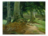 Beech Trees in Frederiksdal Near Copenhagen, 1828 Giclee Print by Christian Ernst Bernhard Morgenstern