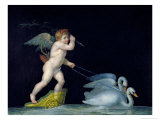 Cupid Being Led by a Pair of Swans Giclee Print by Michelangelo Maestri
