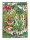 The Creation and the Temptation of Adam and Eve, c.1491 Giclee Print by Michael Wolgemut Or Wolgemuth
