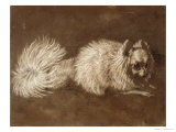Pomeranian Dog Giclee Print by Edwin Henry Landseer