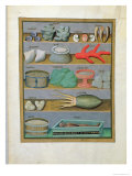 Illustration from the Book of Simple Medicines by Mattheaus Platearius Giclee Print by Robinet Testard