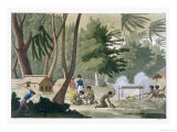 Papu Tribe on the Isle of Rawak, Plate 20, Le Costume Ancien et Moderne, c.1820-30 Giclee Print by G. Bramati