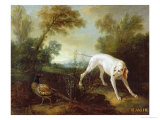 Blanche, Bitch of the Royal Hunting Pack Giclee Print by Jean-Baptiste Oudry