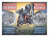 Iron Tail Nickel, Print